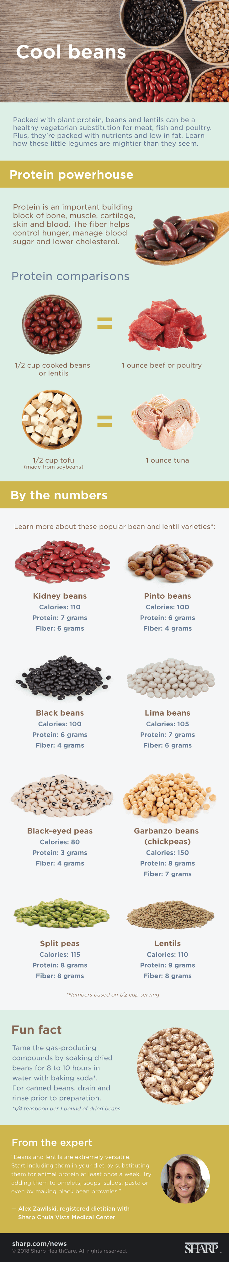 Cool beans infographic resize 051019 PNG