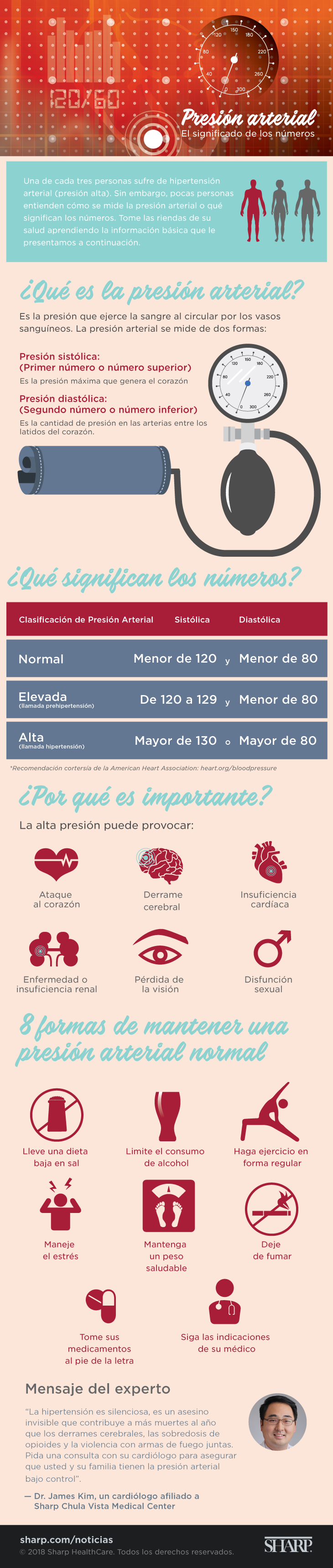 Spanish blood pressure infographic PNG body image