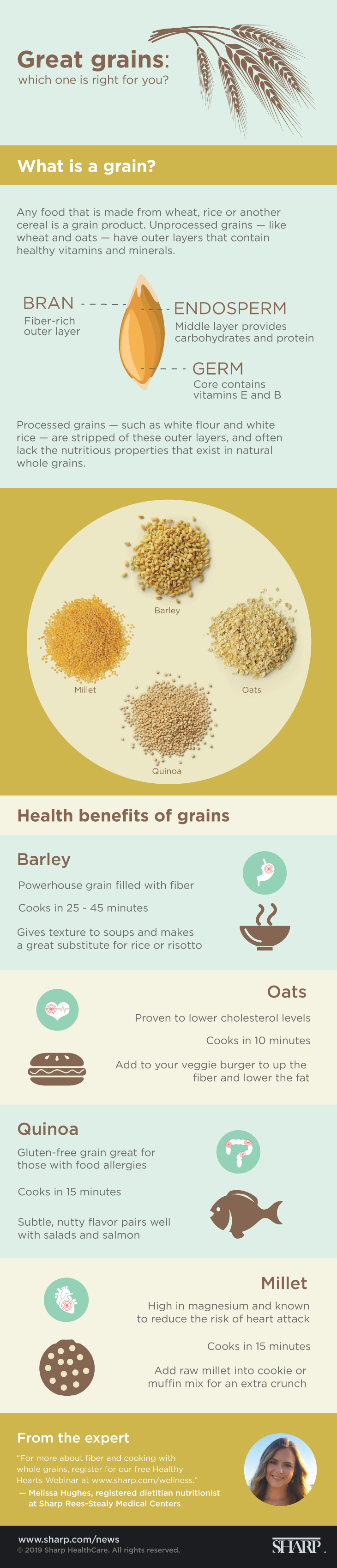 Great grains: what grain is for you? (Infographic) PNG