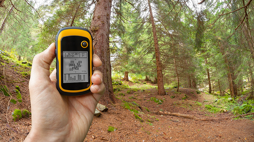 Finding the right position in the forest via GPS
