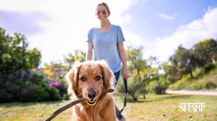 5 Benefits Of Pets During The Covid 19 Pandemic San Diego Sharp Health News