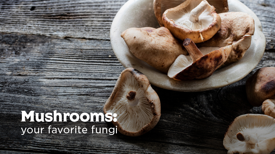 Mushrooms infographic