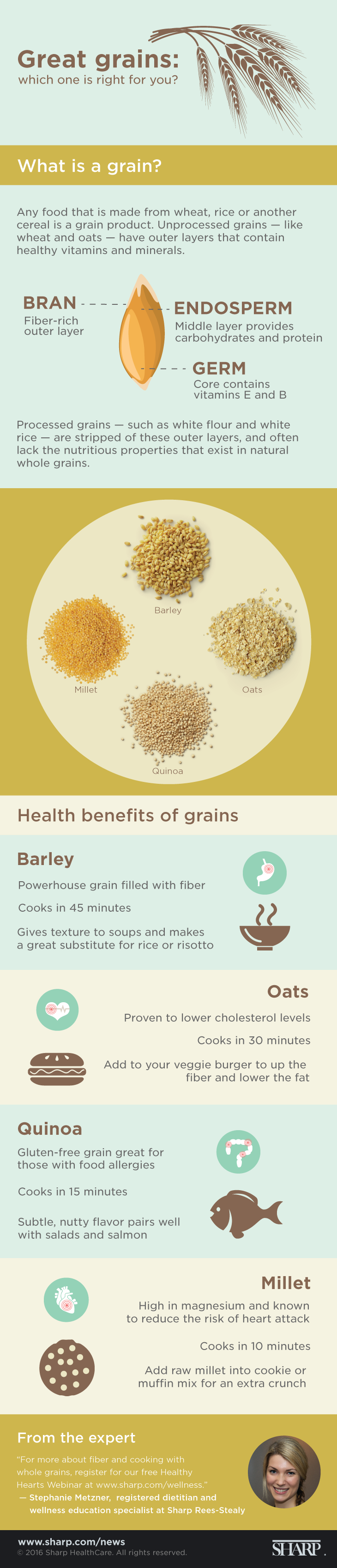 Great Grains (Infographic)